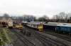 Nene Valley Railway, Wansford - DB Cargo's 60066, 31271/31452 & 50008 all on shed during the diesel gala