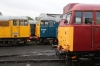 Nene Valley Railway Class 31 60th Anniversary Diesel Gala - Wansford (L-R) 31465/31459 & 31466