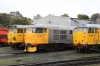 Nene Valley Railway Class 31 60th Anniversary Diesel Gala - Wansford (L-R) 31285, 31108 & 31465