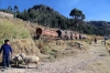 What remains of the meter gauge days at FCHH's Huancavelica station