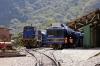 Peru Rail Alco DL535 (ex Alco DL532 #357) #487 shunts stock at Machu Picchu