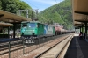 Vest Trans Rail 40-0006 runs through Sinaia