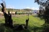 PTG Alco Holic 5 Tour Day 2 - ALSA SECN DL500S's 321050/321059 (carrying 2148) wait at Villanueva del Rio-Minas with 37345 1309 Huelva Mercancias - Zafra