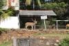 Sri Lanka - Trincomalee, inside Fort Frederick